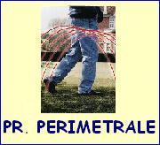 Protezione perimetrale